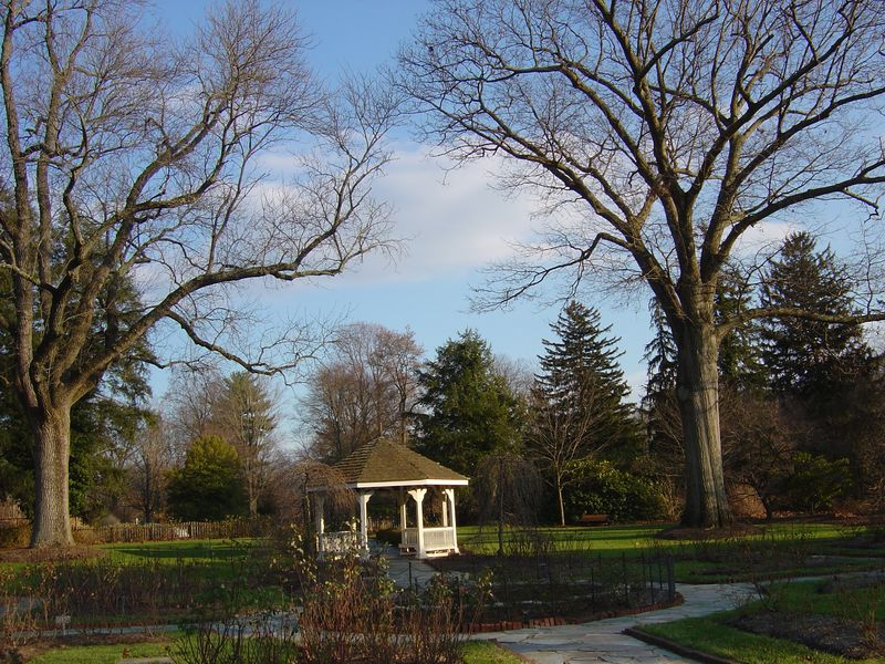 Colonial Park - Nov. 2008 007
