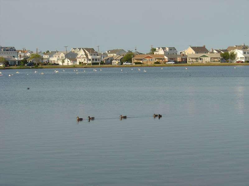 Spring Lake, NJ - June 2010 015